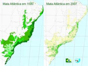 mata_atlantica