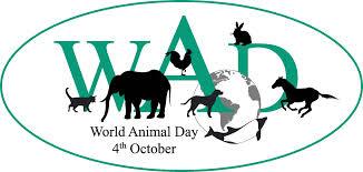 animal-mundial1