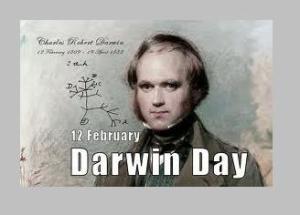 darwin4