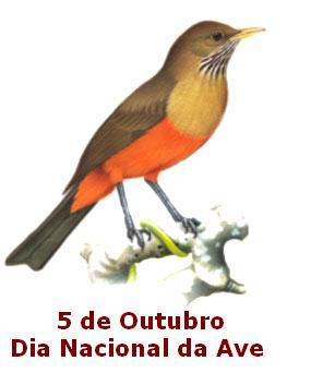 aves_dia